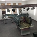 Body panels with Ivy Green